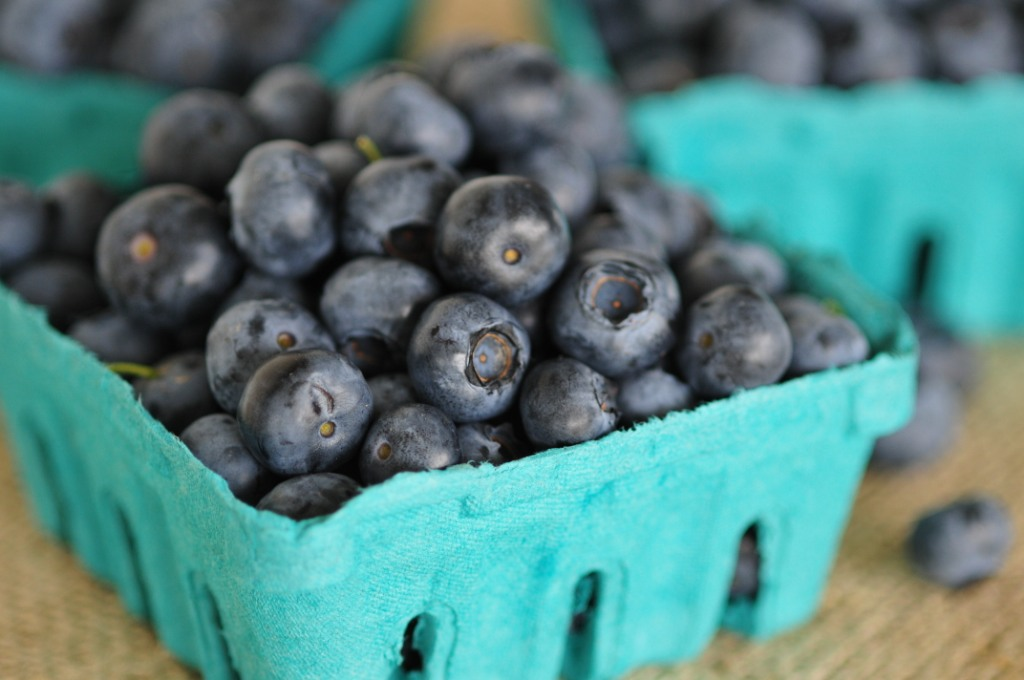 Blueberries are in season!