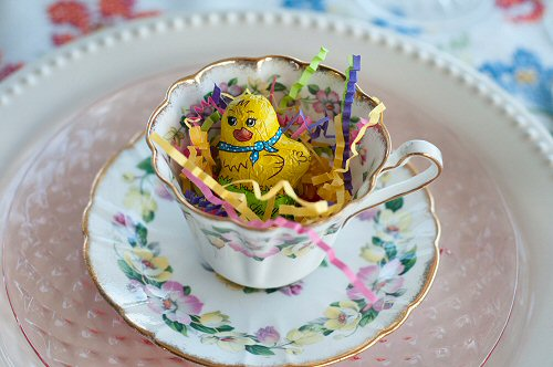 Chocolate Chick in Teacup