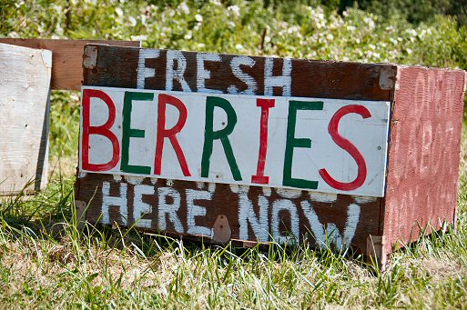 Berry Sign