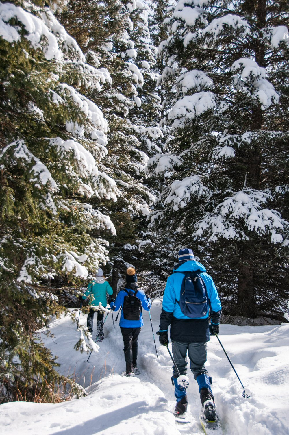 Snowshoeing - Lone Mtn Ranch