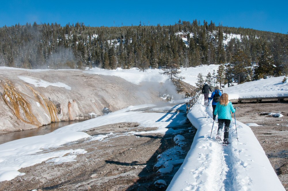 Snowshoeing - Yellowstone